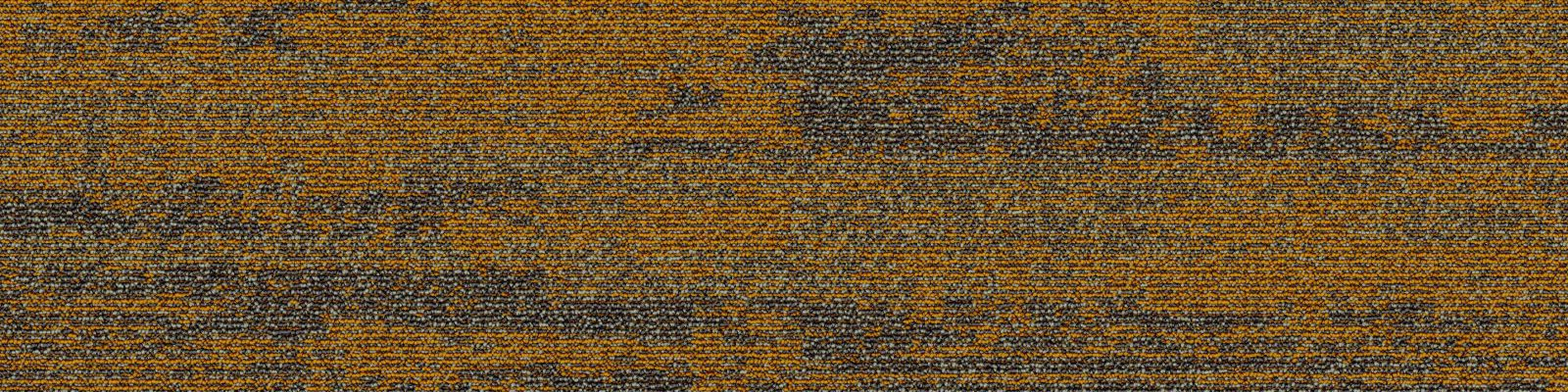 thảm skywalk 48
